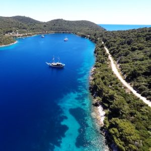Island Mljet Boat Tour